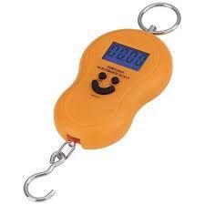 Buy 40 Kg Weighing Scale Digital online