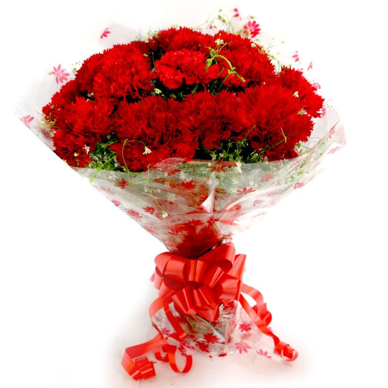 Buy Flaberry Carnation Delight online