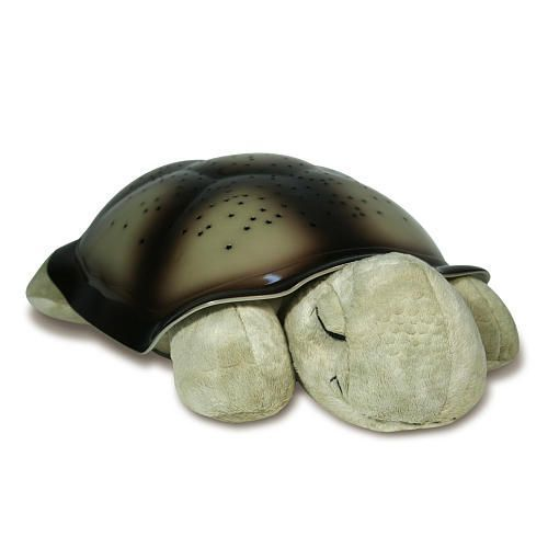 Buy Turtle Night Light LED Lamp online