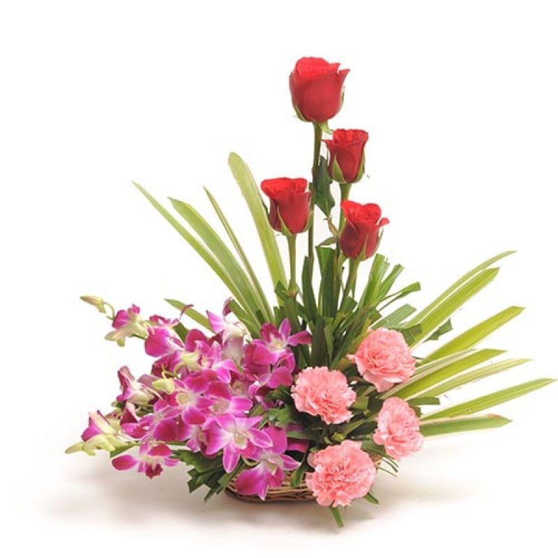 Buy Bigwishbox Premium Flower Basket With Fresh Flowers Set, Roses, Carnations, Orchids online
