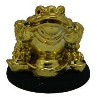 Buy Feng Shui King Money Frog Golden Colourful Small online