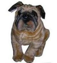 Buy Attractive & Cute Bull Dog Soft Toys online