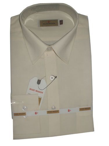 Buy Men's Plain Formal Shirt (cream) online