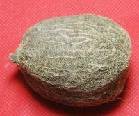 Buy Ekaksi Nariyal / Coconut - A Very Rare Lucky Charm online