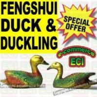 Buy Fengshui Pair Of Mandarin Duck & Duckling online