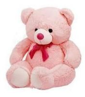 Buy Pink Teddy Bear Big Full Size Huggable 5ft Soft Toy online
