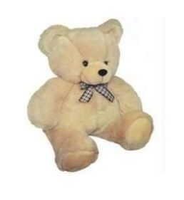 Buy Cute Teddy Bear - 2 Feet online
