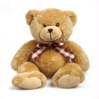 Buy Real Sized Huggable Teddy Bear online