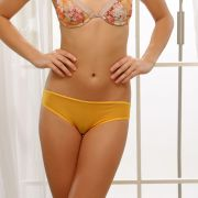 Cloe Set Of 2 Fashionable Briefs In Yellow And Royal Blue PN0196Q59