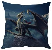 Stybuzz Dragon And The Warrior Black Cushion Cover