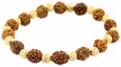 5 Mukhi Rudraksha With Golden Beads Bracelet