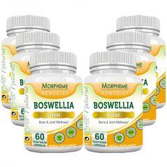 Morpheme Boswellia (Shallaki) Caps 500mg Extract 60 Veg Caps - 6 Bottles