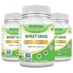 Morpheme Wheatgrass Supplements 500mg Extract 60 Veg Caps - 3 Bottles