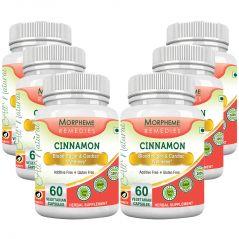 Morpheme Cinnamon 500mg Extract 60 Veg Caps - 6 Bottles